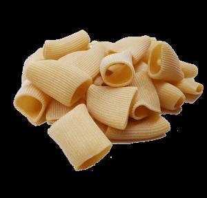 Pasta Biologica di semola di grano duro Siciliano